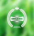 Natural vintage label on blurry background vector image