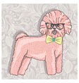 Hipster bichon with glasses and bowtie vector image vector image