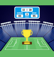 cartoon football field with a golden cup vector image