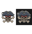 Pirate Skull and Crossbones vector image