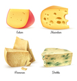 Quality Cheese 4 Realistic Images Set vector image