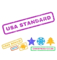 USA Standard Rubber Stamp vector image