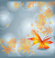 Autumn leaf fall nature background vector image vector image