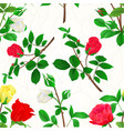 seamless texture bouquet of rosebuds vector image