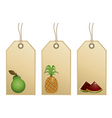 fruit tags vector image vector image