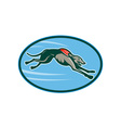 Greyhound racing and jumping set inside oval vector image vector image