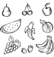 Sketch of fruits icon set vector image