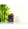 Spa background with bamboo and stones vector image vector image