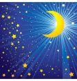 moon on the night sky vector image