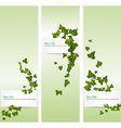 spring banners with ivy vector image