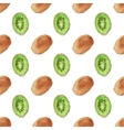 Seamless watercolor pattern with kiwi on the white vector image