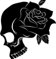 Pirate skull and one rose vector image