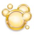 gold circle frames vector image vector image