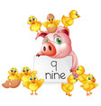 counting number nine with pig and chicks vector image
