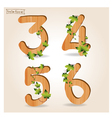 wood alphabet number with branch green leaves vector image