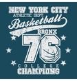Basketball champion t-shirt vector image
