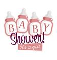 Pink Baby Shower Bottles vector image