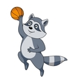 Cartoon raccoon player with ball vector image