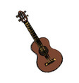 acoustic guitar music instrument vector image