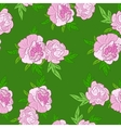pink flowers on green background vector image