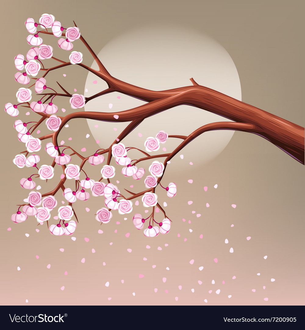 Blooming cherry tree branch vector