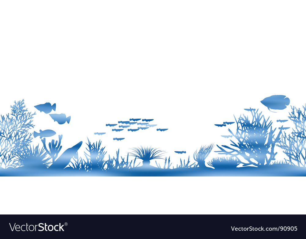 Water coral vector