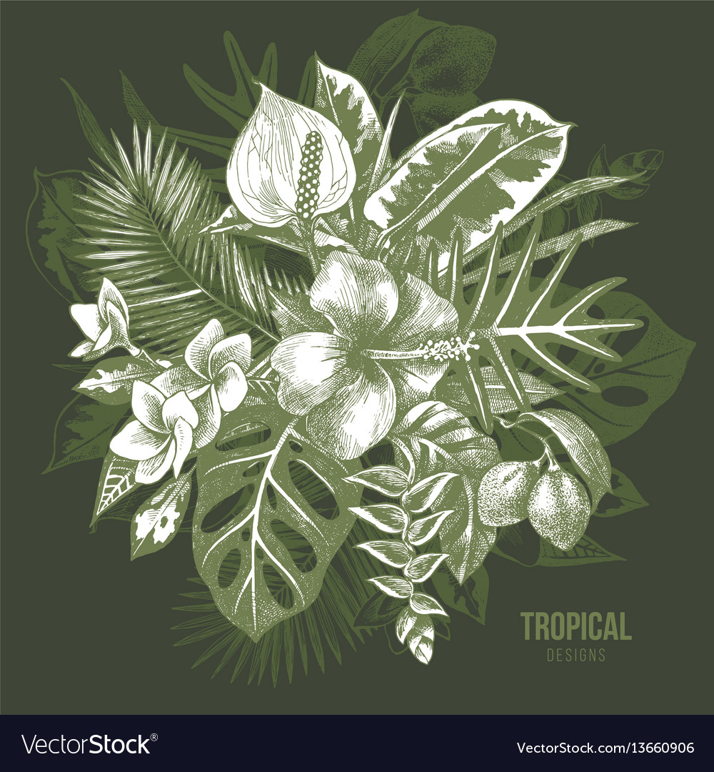 Hand drawn tropical plants vector