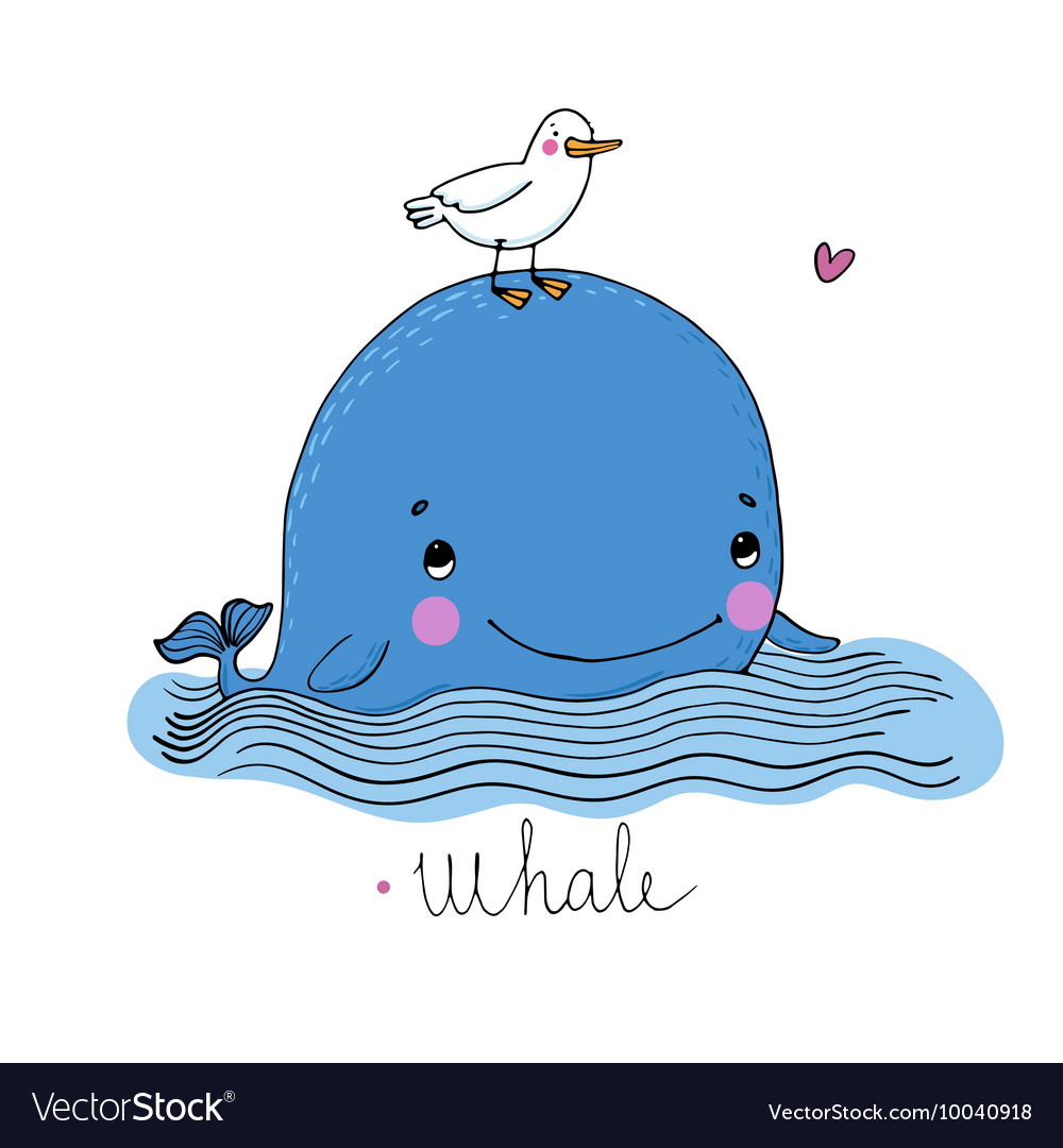 Little pretty whale and seagull vector
