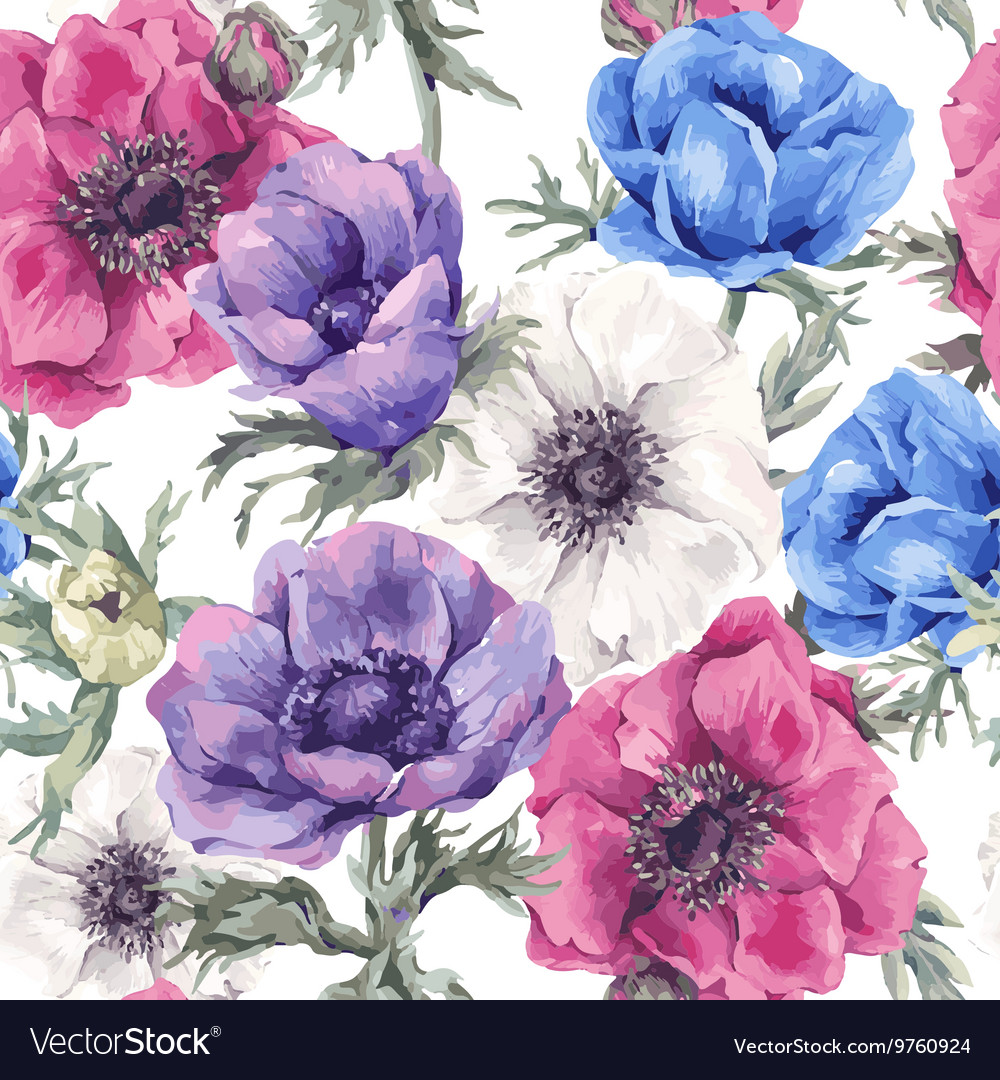 Floral seamless pattern with blooming anemones vector