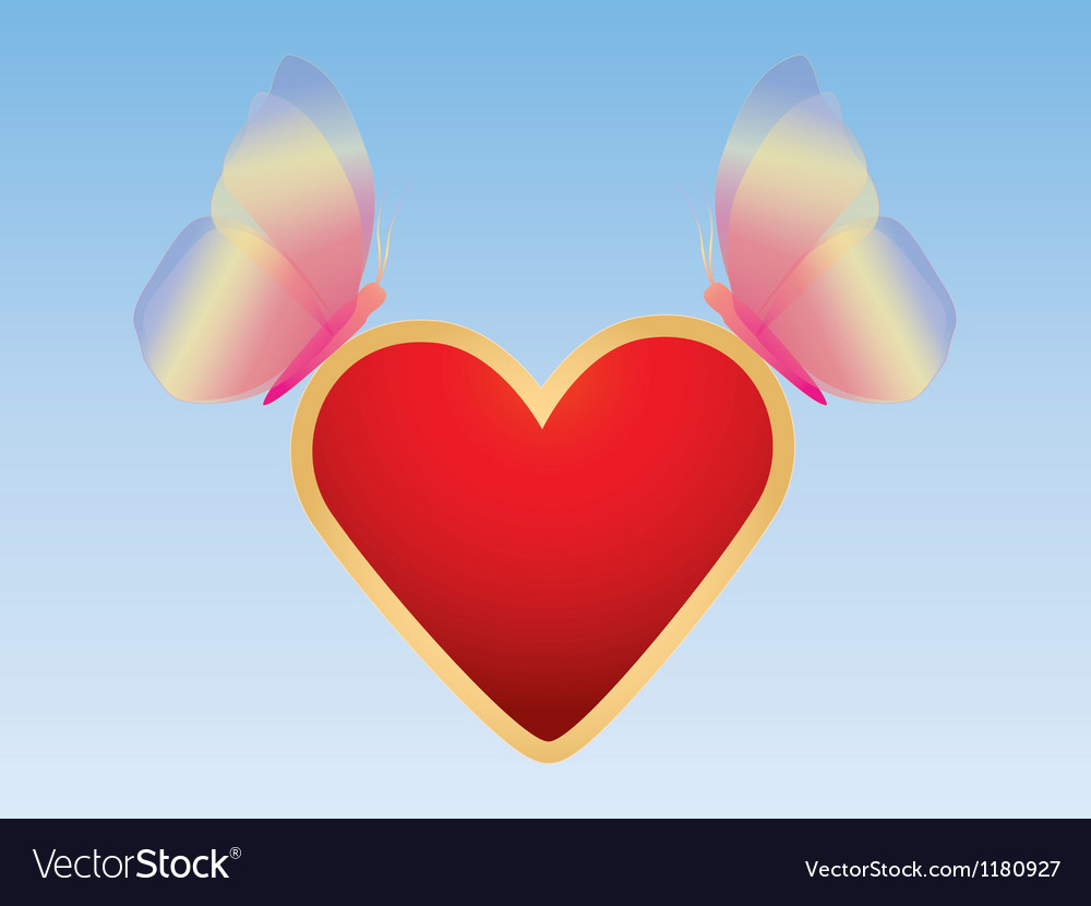 Butterflies with valentine vector