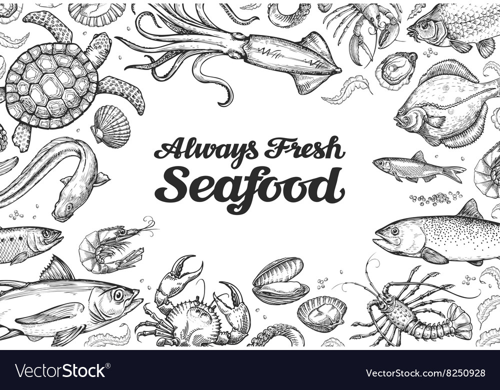 Menu restaurant seafood hand drawn collection of vector