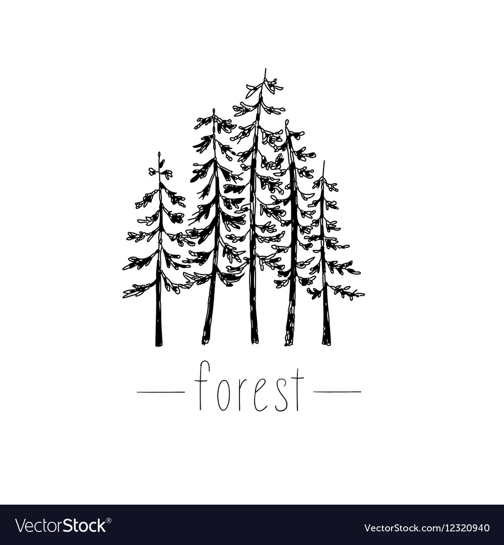 Hand drawn with wild forest vector