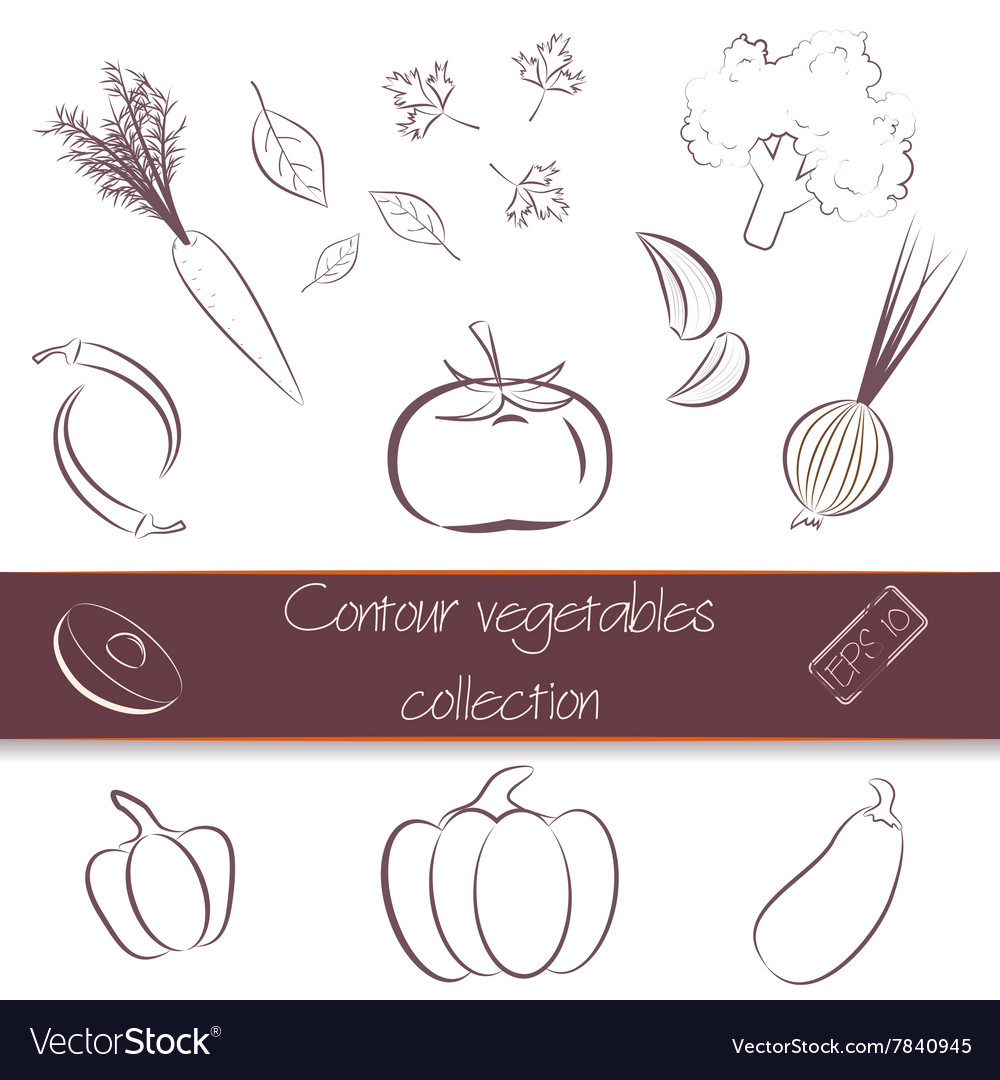 Contour vegetables super pack vector