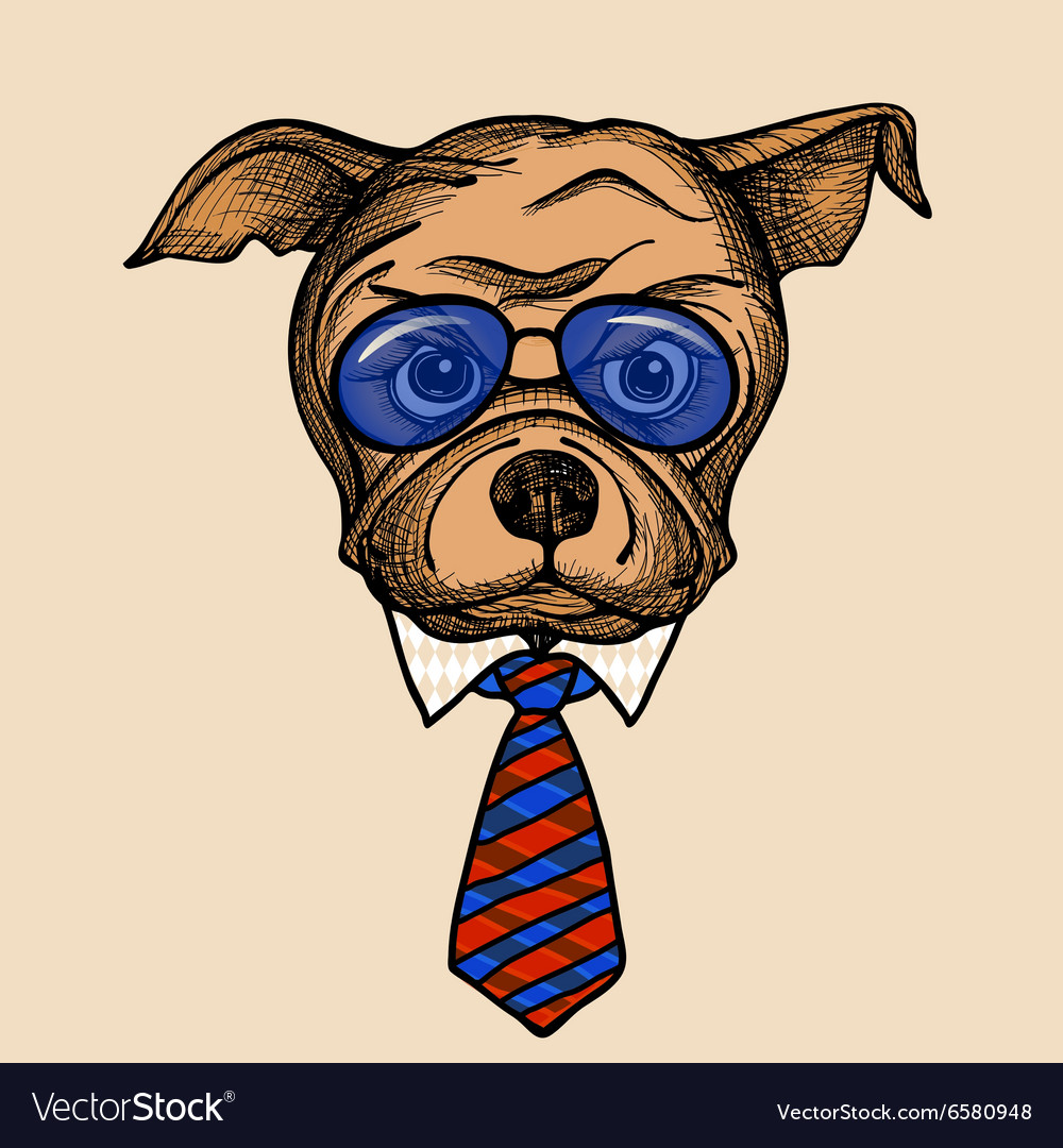 Fashion bulldog portrait vector