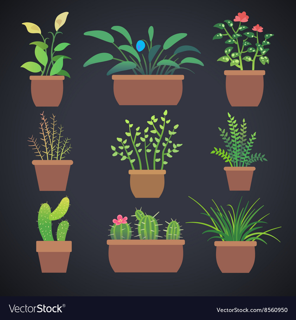 House plants flowers in pots flat icons vector