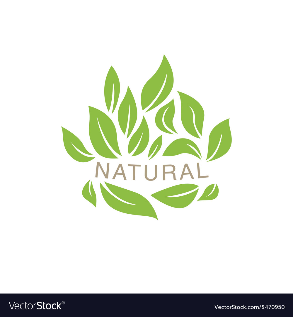 Random placed leaves surrounding text organic vector