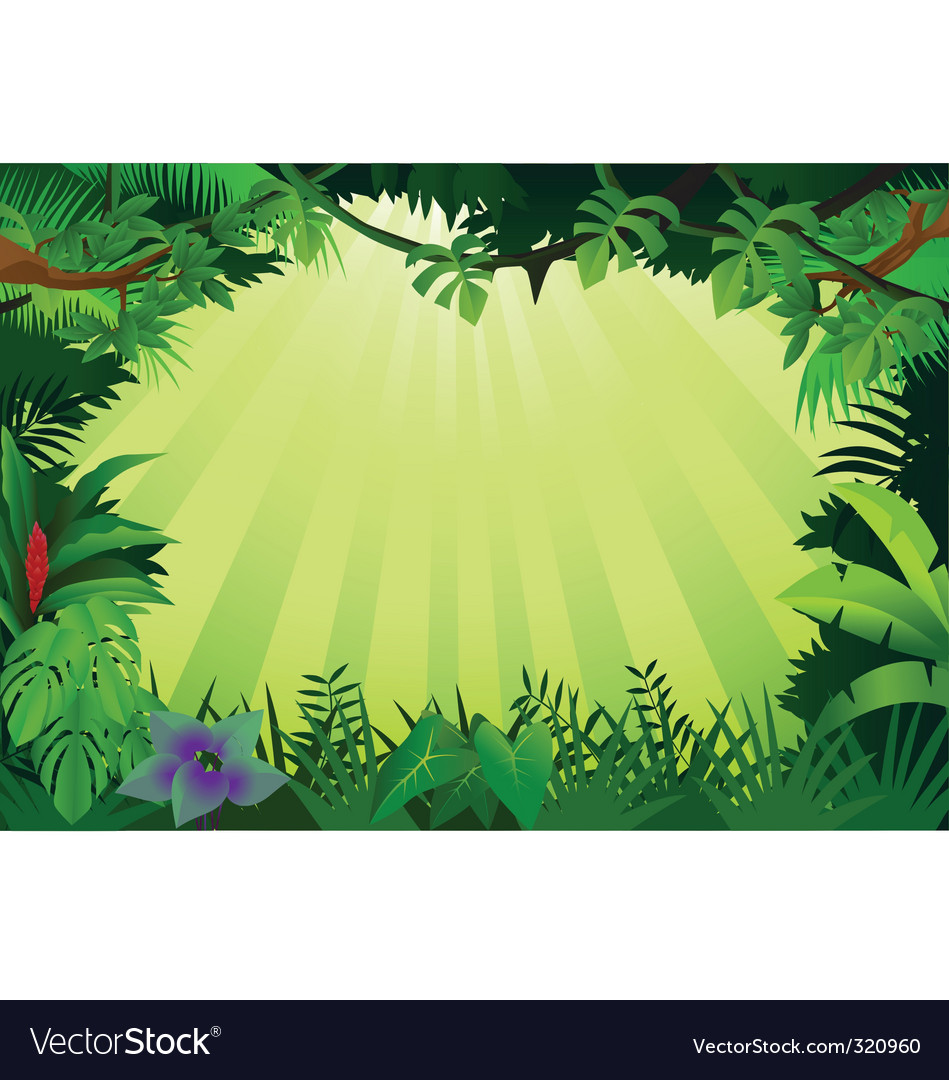 Jungle frame vector