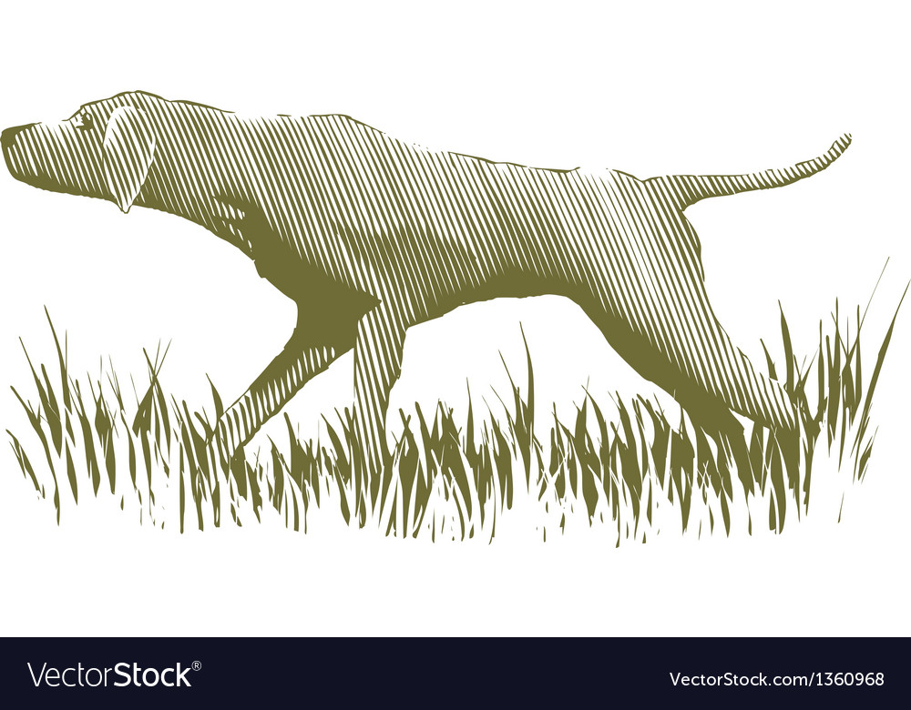 Woodcut bird dog vector