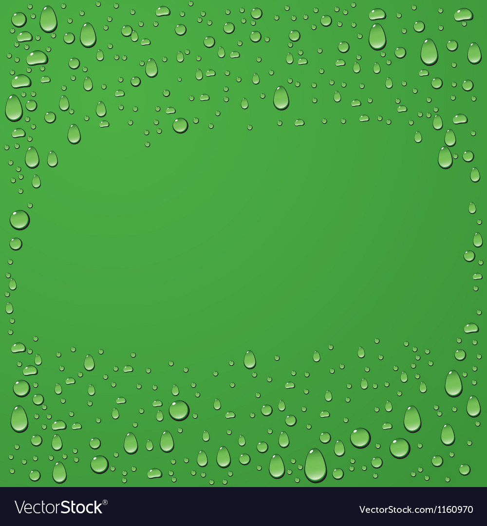 Water drop on green background vector
