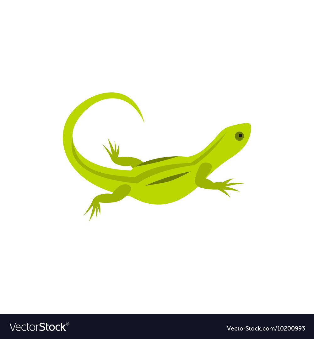 Lizard icon in flat style vector