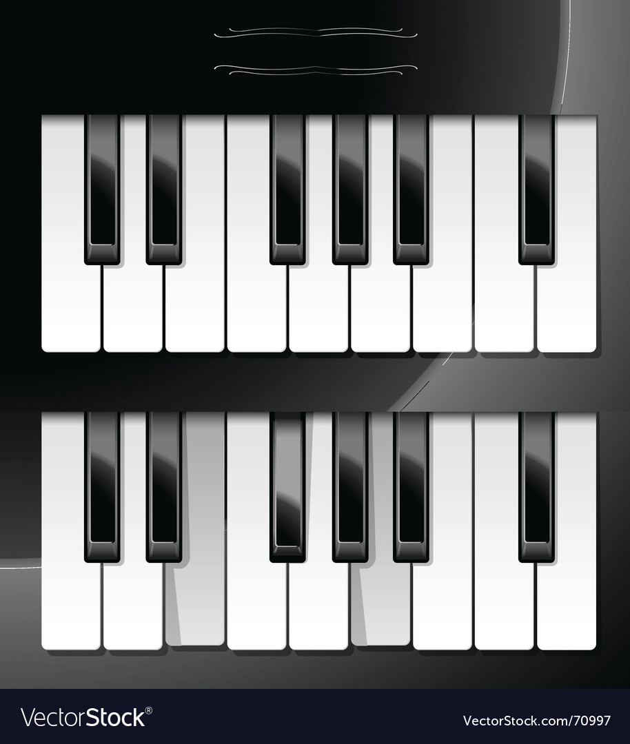 Of piano keys vector