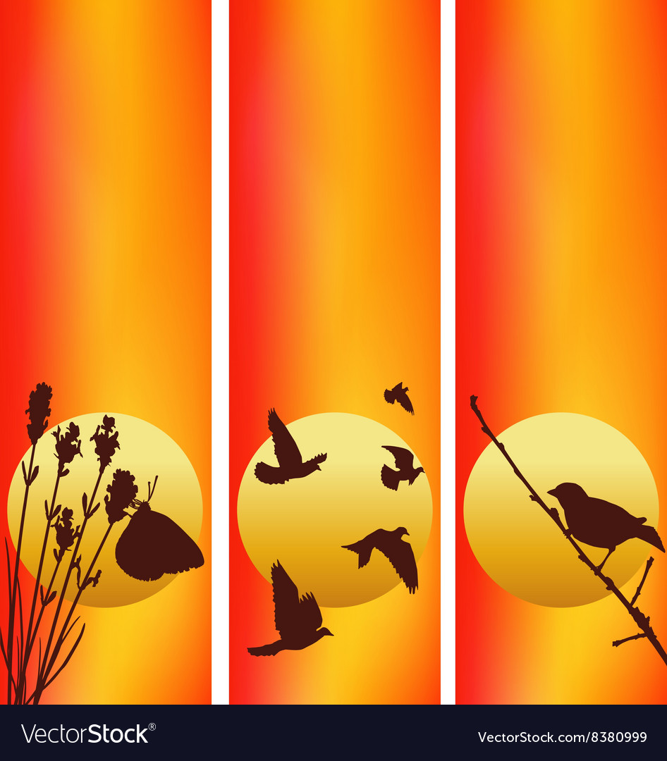 Three sunset vector