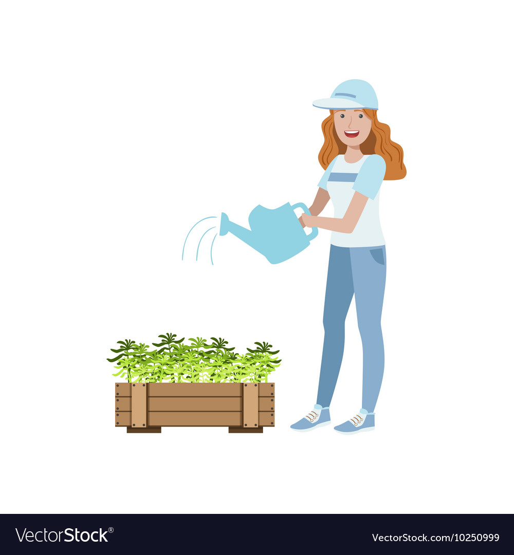 Volunteer watering the plants vector