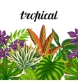 Seamless horizontal border with tropical plants vector image