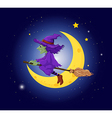 A witch with a violet hat riding on a broom vector image
