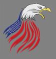 american pride vector image