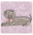 Hipster dachshund with glasses vector image vector image