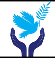 hands and dove of peace vector image