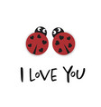 i love you card with two ladybugs vector image
