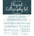 Elegant calligraphic letters set vector image